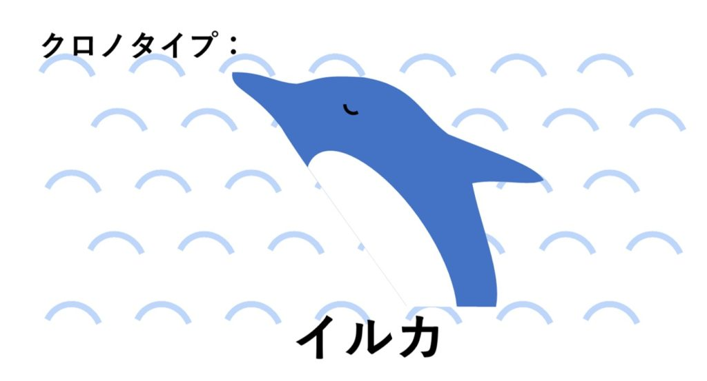 クロノタイプ イルカ